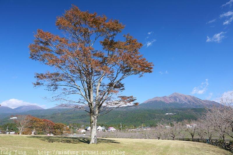 Kyushu_161111_279.jpg