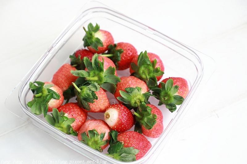 FoodSaver_040.jpg
