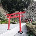Kyushu_171215_021.jpg