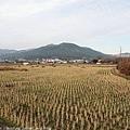 Kyushu_171215_047.jpg