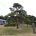 Kyushu_171217_076.jpg