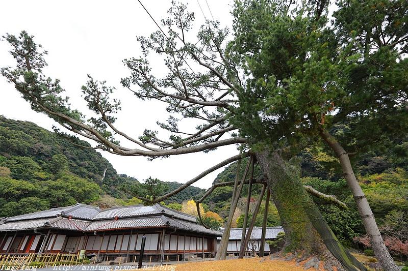 Kyushu_171217_169.jpg