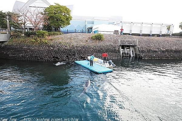 Kyushu_171217_380.jpg