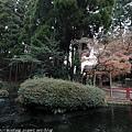 Kyushu_171218_029.jpg