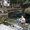 Kyushu_171218_037.jpg