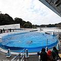 Kyushu_171220_0011.jpg