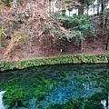 Kyushu_171218_071.jpg