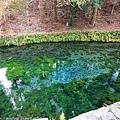 Kyushu_171218_073.jpg