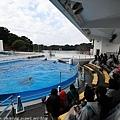 Kyushu_171220_0012.jpg