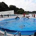 Kyushu_171220_0015.jpg