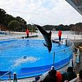 Kyushu_171220_0017.jpg
