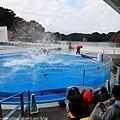 Kyushu_171220_0021.jpg