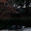 Kyushu_171218_084.jpg