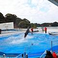 Kyushu_171220_0023.jpg