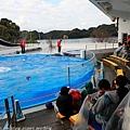 Kyushu_171220_0024.jpg