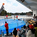 Kyushu_171220_0025.jpg
