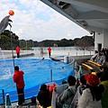 Kyushu_171220_0026.jpg