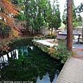 Kyushu_171218_091.jpg