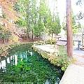 Kyushu_171218_094.jpg