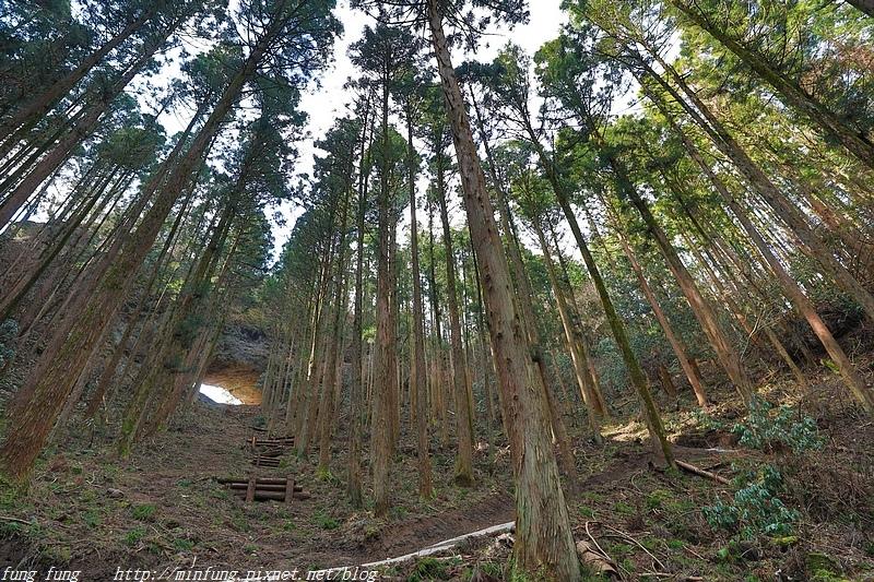 Kyushu_171218_293.jpg