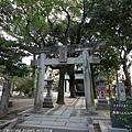 Kyushu_171221_002.jpg