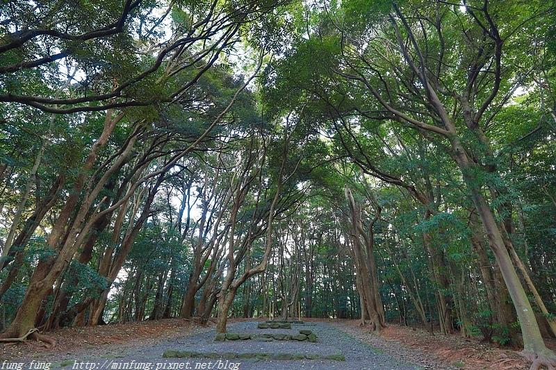 Kyushu_171221_557.jpg