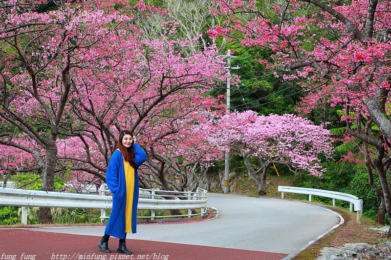 Okinawa_1801_0366.jpg