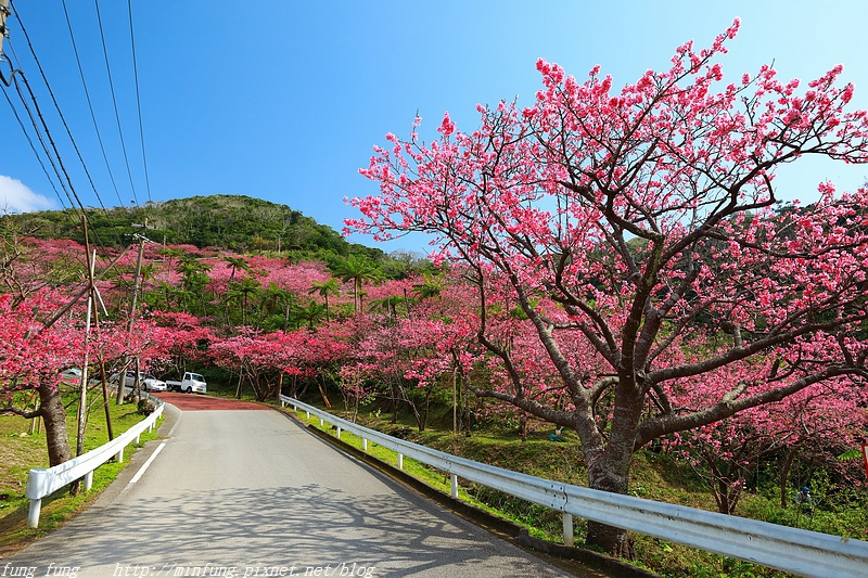 Okinawa_1801_0523.jpg