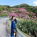 Okinawa_1801_0587.jpg