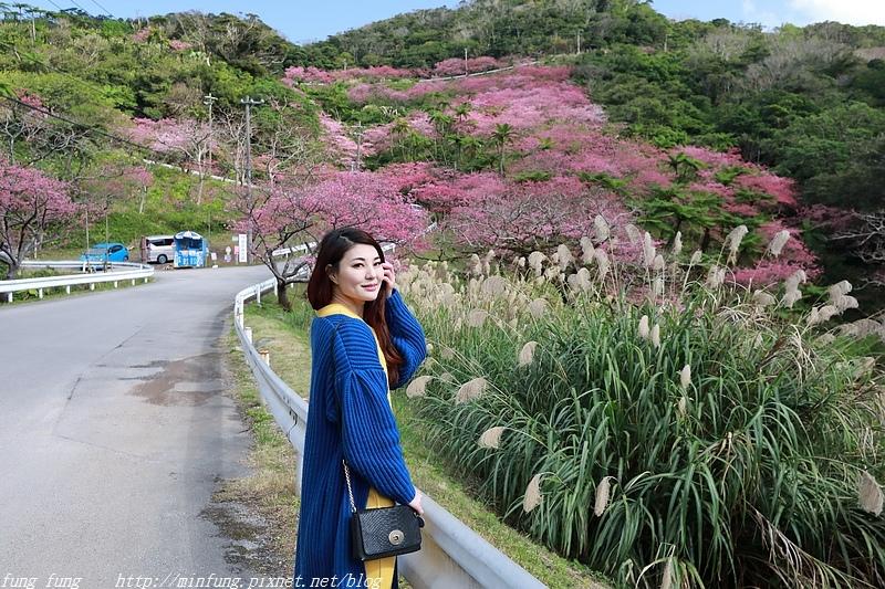 Okinawa_1801_0588.jpg