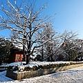 Kanto_180123_035.jpg