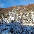 Hokkaido_1802_0076.jpg