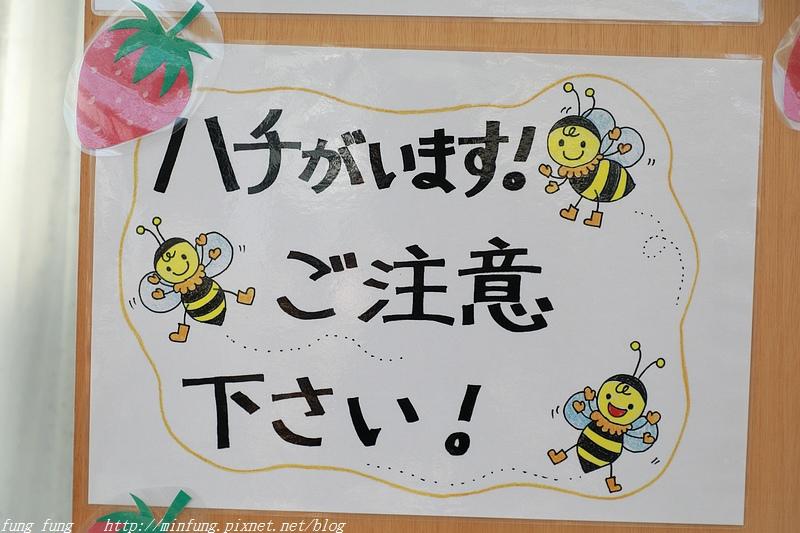 Kanto_180125_236.jpg