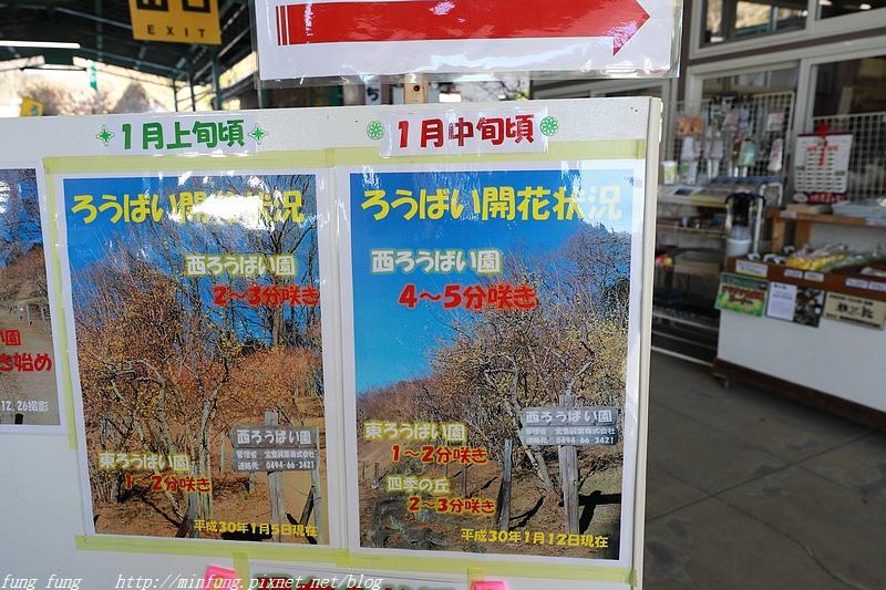 Kanto_180126_369.jpg