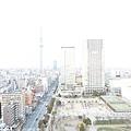 ARIO_054.jpg