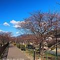 Izu_180113_128.jpg