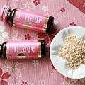 liftage_015.jpg