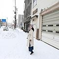 Hokkaido_190111_0005.jpg