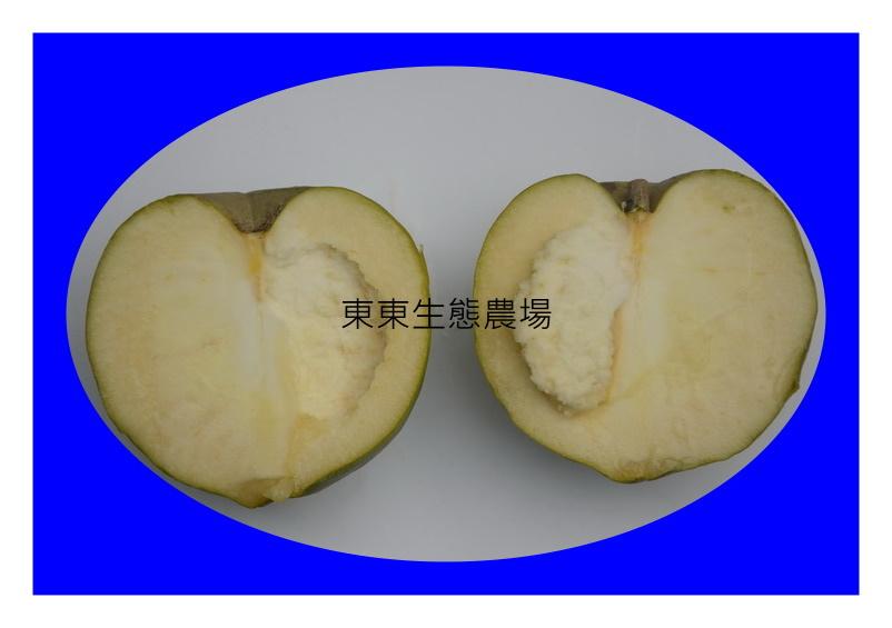 中埔果園白柿品種candy超大果實剖面調整DSC_5800