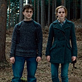 Emma Watson and Daniel Radcliffe.png
