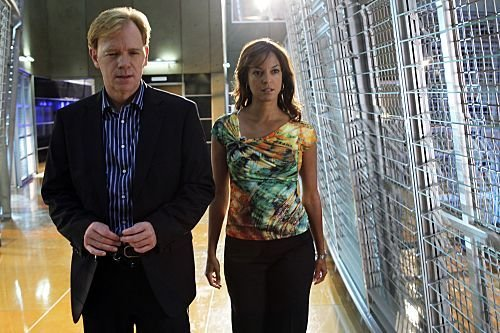 CSI_Miami_Season_10_Episode_2_Stiff_8-3624-590-700-80_595.jpg