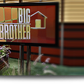 Big Brother 14 (2)