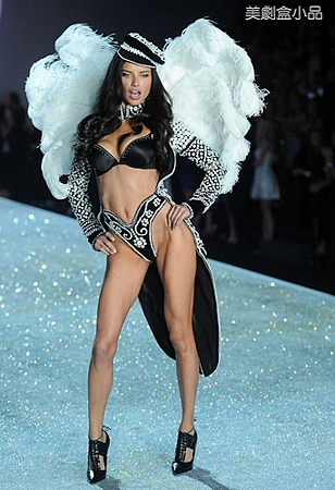 The Victoria's Secret Fashion Show (7).png