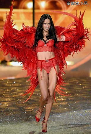 The Victoria's Secret Fashion Show (29).png