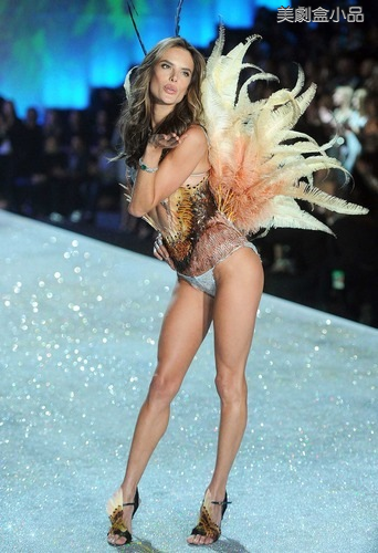 The Victoria's Secret Fashion Show (52).png