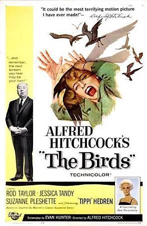 The Birds-.jpg