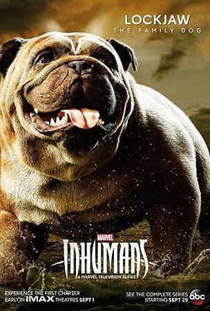 The Inhumans S01 (1).jpg