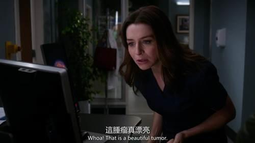 Grey's Anatomy S14 (3).jpg