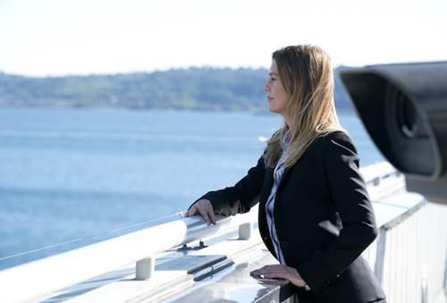 Grey's Anatomy S14 (11).jpg