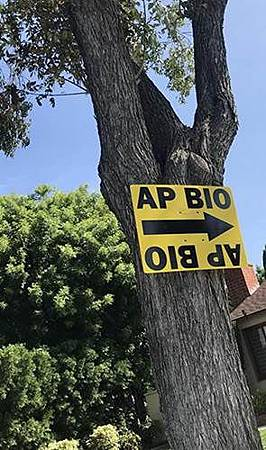 A.P. Bio S01 (4).jpg